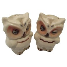 Vintage Owl Hand Painted Salt and Pepper Shakers