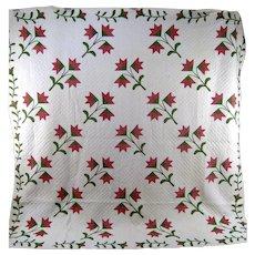 Red & Green Carolina Lily Pattern Quilt c.1860 Handmade Antique