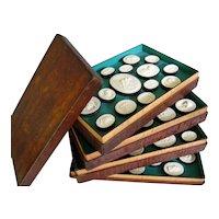 Grand Tour Intaglio Collection Box Case Antique Souvenir Plaster Cameo Seal