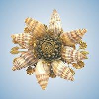Vintage Miriam Haskell Natural Shell Brooch