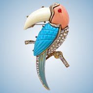 Vintage Lucite Toucan Brooch - Book Piece