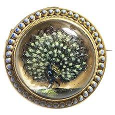 Rare Essex Crystal Reverse Painted Peacock Brooch