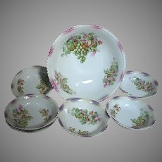 Antique Porcelain Berry Set  Larger Bowl and 6 Serving Small Bowls Silesia P K