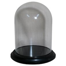 Small Glass Display Dome on Wood Base