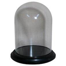 Small Glass Display Dome on Wood Base