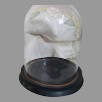 Small Glass Display Dome on Wood Base with Ball Feet  8 inches tall