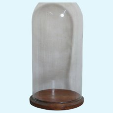 Glass Display Dome  Wood Base  12 inches tall