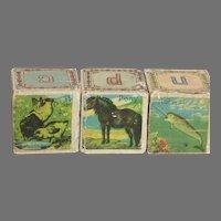 "Three Paper Covered Blocks  Alphabet Animals  Blocks are Rattles Old    1-1/2 """