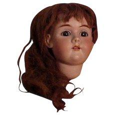 Beautiful Handwerck Mold 99 Large Head