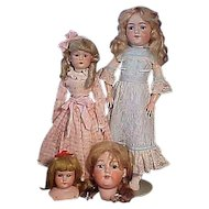 A Group Of German And One American Bisque Doll Searching For A New Home