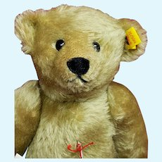 "Pretty 12"" Strong Museum Teddy Bear by Steiff 0155/32"