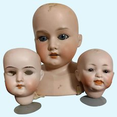 Trio Of German Bisque Doll Heads