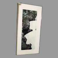 Original limited edition 2/250 Athabasca Falls BC Photograph 20x40 signed