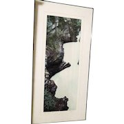 Original limited edition 2/250 Athabasca Falls BC Photograph 20x40 signed