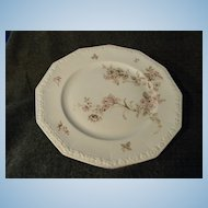 Rosenthal Germany Colonial Garden Maria Serving Platter
