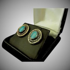 Sterling Silver & Turquoise Southwest Jewelry Earrings