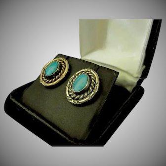 Sterling Silver & Turquoise Southwest Jewelry Earrings
