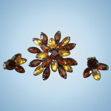 Exquisite Vintage Amber Brooch with Matching Earrings