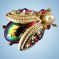 Dodds Jewelry Beetle Pin