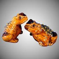 Wonderful Realistic Hoppy Toad Salt & Pepper Shakers