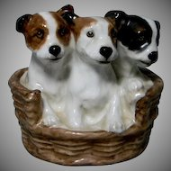 Royal Doulton ...Three Puppies in a Basket