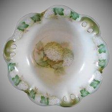 Lovely R S Germany Snowball Flower or Hydrangea Fruit Bowl
