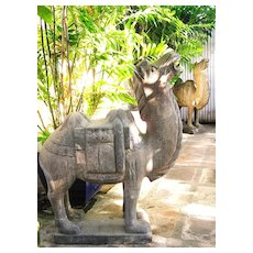 Pair Chinese Massive Bactrian Stone Camels