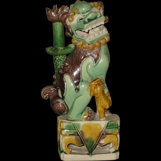 Antique Chinese Kangxi Period Sancai Porcelain Lion