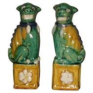 Pair Antique Chinese porcelain Sancai Glazed Temple Lions