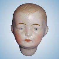 Antique German Bisque Boy P Doll Socket Head