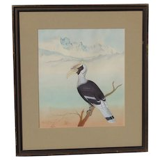 Original detailed gouache painting of tropical bird in Himalayan Mountain foothills