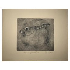 Sheridan Oman (1926 - 1997) American listed artist wildlife etching of a young jackrabbit