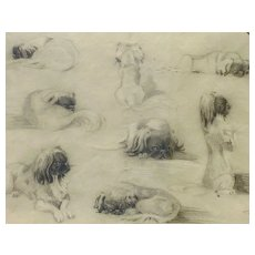 Dog art fine 1925 signed pencil study drawing of Pekinese