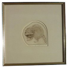 Judith Anderson American artist pencil signed etching of Raccoon 1971
