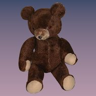 Vintage Big Brown Bear Jointed Teddy Bear