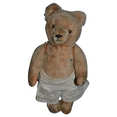 Old Teddy Bear Jointed W/ Crier Mohair Glass Eyes