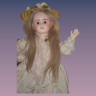 Antique Doll French Bisque Etienne Denaumur E 9 D Long Wig Sweet Face