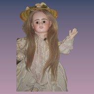 Antique Doll French Bisque Etienne Denaumur E 9 D Long Wig Sweet Face