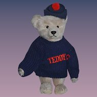Vintage Teddy Bear Jointed Mohair Steiff Tagged