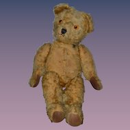 Wonderful Large Teddy Bear Jointed Mohair Velveteen Paws W/ Bear Pin
