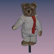 Wonderful Old Teddy Bear Mohair Jointed Glass Eyes
