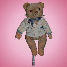 Old Teddy Bear Mohair Glass Eyes Jointed