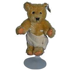 Old Teddy Bear Miniature Steiff Bear Mohair