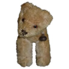 Wonderful Old Miniature Mohair Teddy Bear Jointed Neck Old Collar W/ Bell