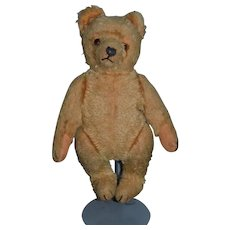 Old Teddy Bear W/ Growler Sweet Size Jointed