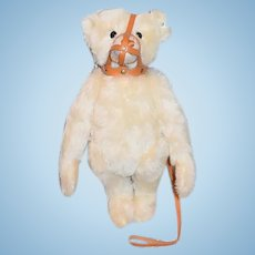 Wonderful Steiff Teddy Bear Limited Edition Jointed Mohair W/ Muzzle
