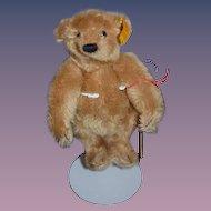 Teddy Bear Steiff Mohair Jointed Button Tag String Tag Sweet