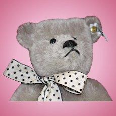 Grey (Margarete Steiff Giengen-Brenz Teddybar-Modell 1902) Steiff Teddy Bear designed by Richard Steiff