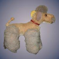 Old Steiff Poodle Dog