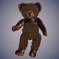 Hildegard Gunzel Teddy Bear Artist Made Sweet Brown Bear Jointed